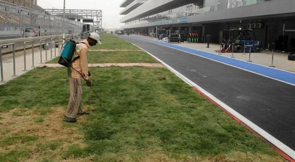 Pracodawco, nie maluj trawy na zielono