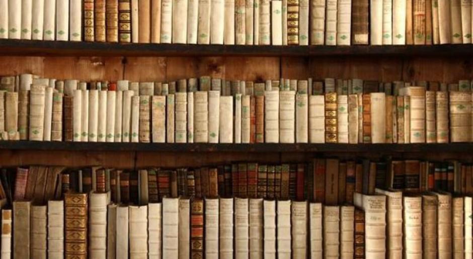 Jakie są różnice między bibliotekarzem-pracownikiem, a bibliotekarzem-nauczycielem?