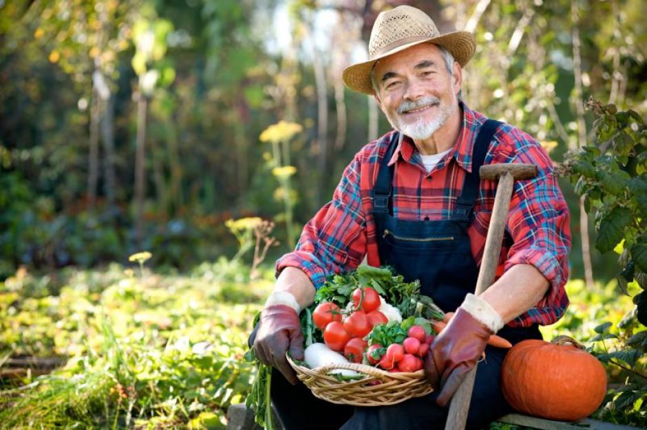 38 tys. miejsc pracy na wsi dzięki unijnym funduszom