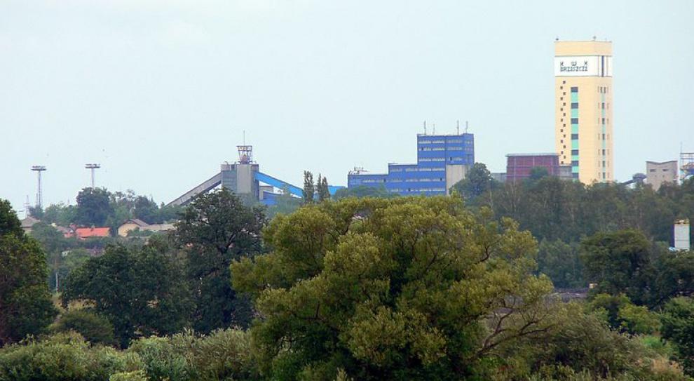 Związki nie przyjęły planów restrukturyzacji kopalń Brzeszcze i Piekary