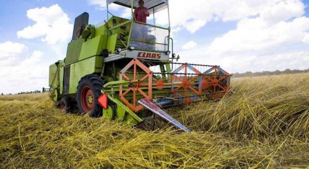 Jak bezpiecznie pracować przy maszynach rolniczych?