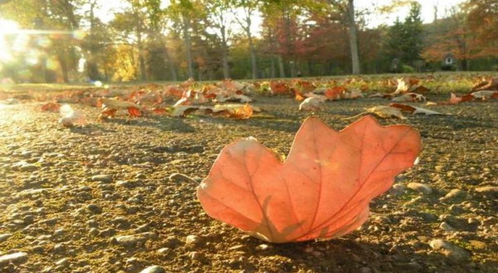 Jesienny wysyp ofert pracy