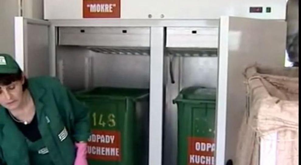 Będzie nowy zawód - sortowacz odpadów komunalnych