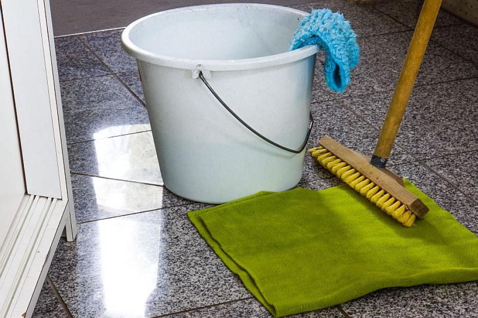 Minister ds. imigracji zatrudniał sprzątaczkę bez wizy na pobyt stały