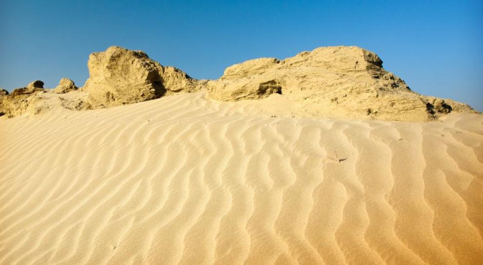 Polscy menedżerowie biegną przez pustynię w Jordanii