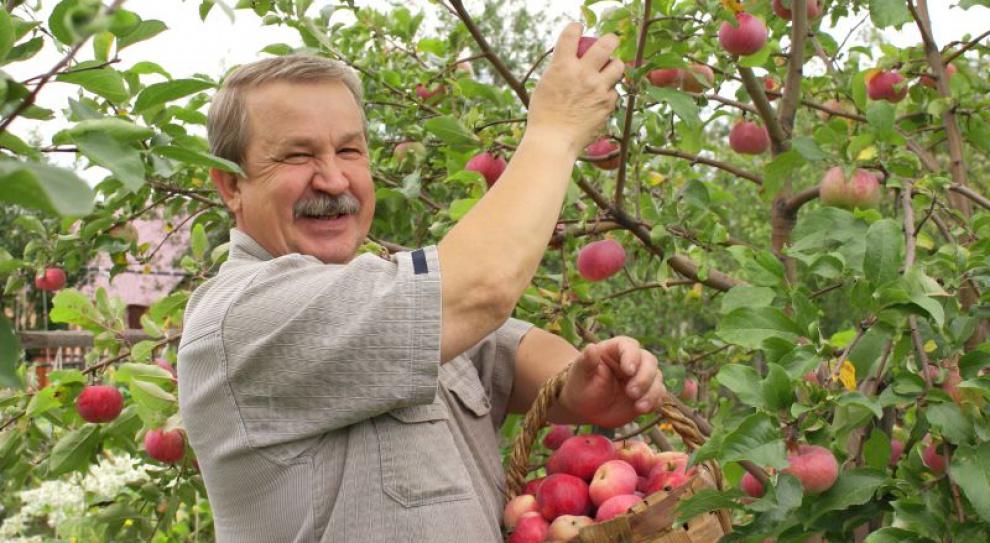 Farmerzy w Niemczech mogą stracić pracę wskutek ujednolicenia płacy minimalnej
