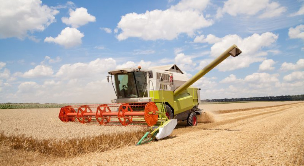 Rolnik zarabia więcej od etatowca
