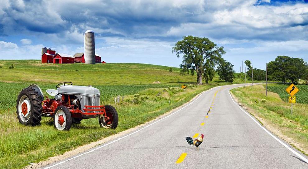 Zaprzestanie pracy w gospodarstwie rolnym warunkiem przyznania zasiłku dla opiekuna