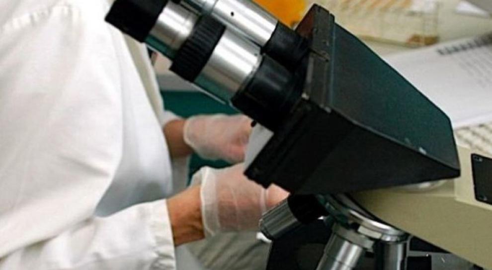 Patomorfologów jak na lekarstwo