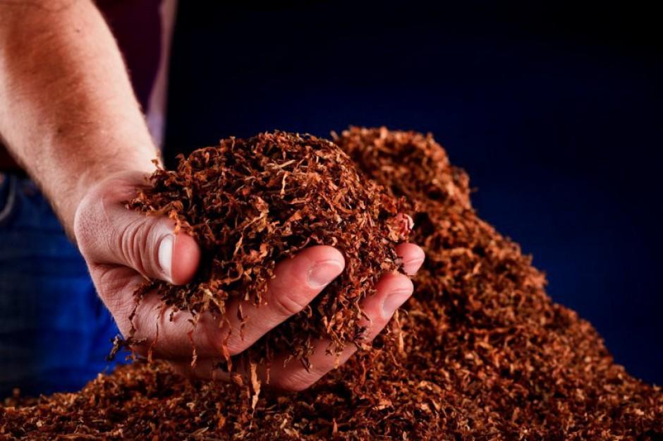 Szykują się zwolnienia w branży tytoniowej. Przez UE