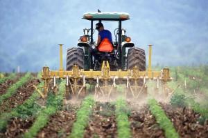 Pensje w państwowych agencjach rolniczych lecą w dół