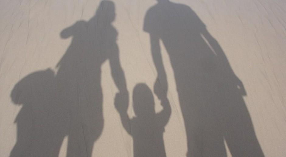 Jak wygląda sytuacja materialna polskich rodzin?