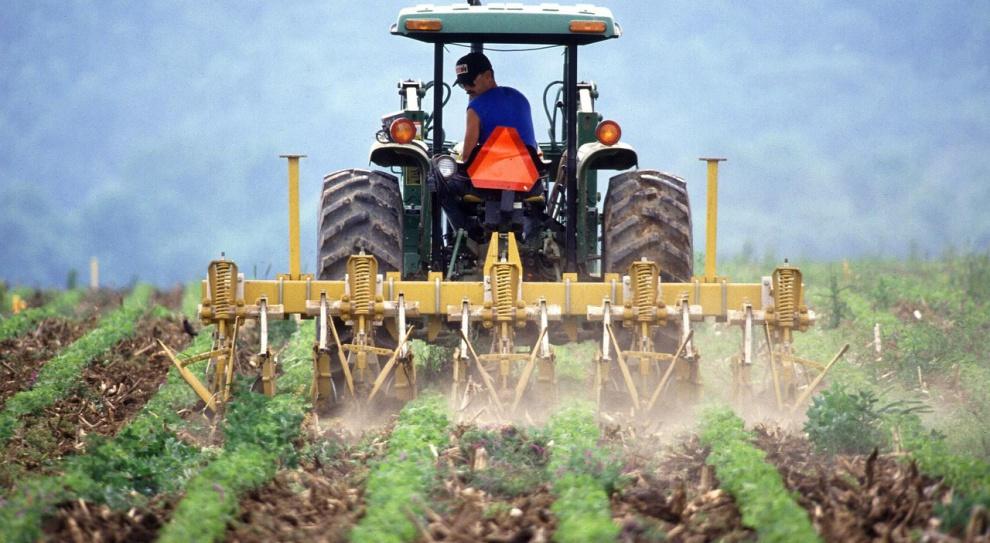 Rolnicze OPZZ: Chcemy rozmów z Ewą Kopacz