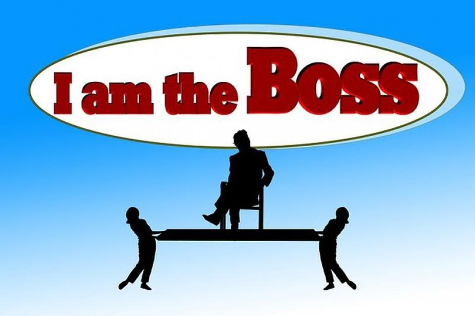 Najbardziej opłaca się być szefem w ubezpieczeniach i IT