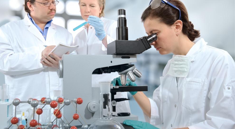 Ile zarabia specjalista ds. badań i rozwoju, a ile jego szef?