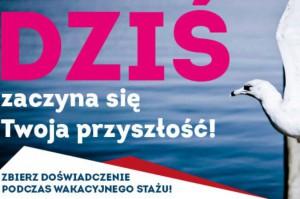 377 miejsc stażowych czeka na studentów i absolwentów w Gdańsku