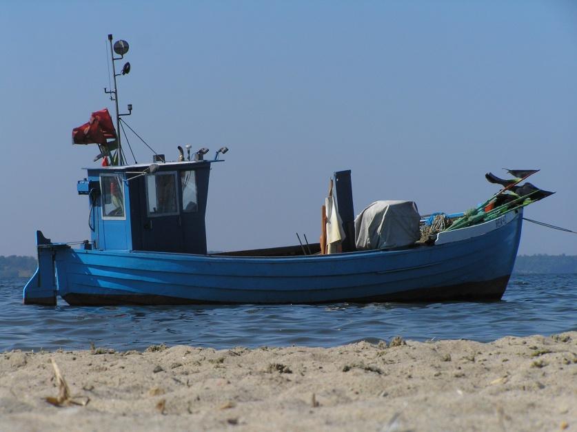 Może warto zostać rolnikiem albo rybakiem?