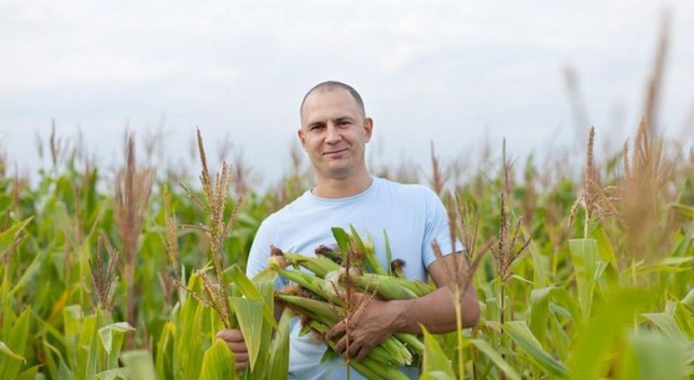 Polski rolnik zarabia pięć razy mniej niż jego duński kolega
