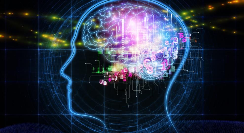 Jerzy Vetulani: Jak usprawnić mózg nastolatka?