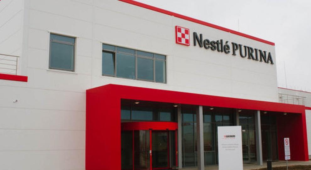 Nestlé Purina rektutuje. Planuje zatrudnić 300 osób do końca roku