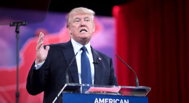 Donald Trump zatrudniał nielegalnie Polaków?
