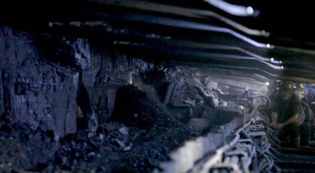 Kompania Węglowa, praca: Absolwenci szkół górniczych znajdą zatrudnienie
