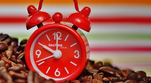 Wymiar pracy: Najbardziej wydajne są osoby pracujące maksymalnie 25 godzin tygodniowo
