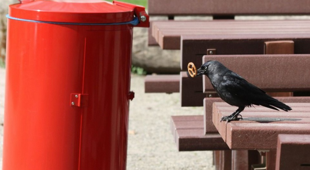 Branża gospodarki odpadami, nowe przepisy: In-house sprzeczny z planem Morawieckiego