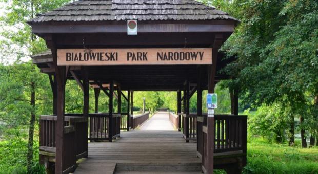 Olimpia Pabian dyrektorem Białowieskiego Parku Narodowego