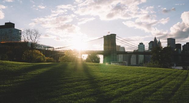 Dzień Ochrony Środowiska: Jaka przyroda w biznesowej panoramie miasta?