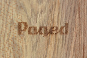 Zmiany w zarządach spółek grupy Paged