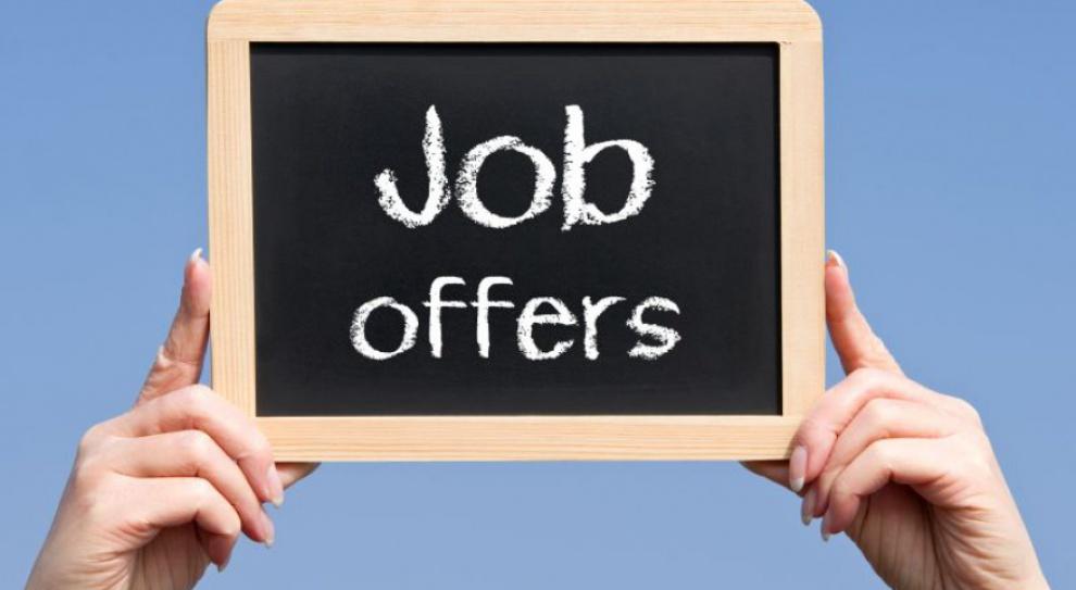 Oferty pracy: Rośnie liczba ogłoszeń o pracę