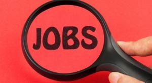 Firmy chcą zatrudniać. W jakich branżach poszukiwani są pracownicy?