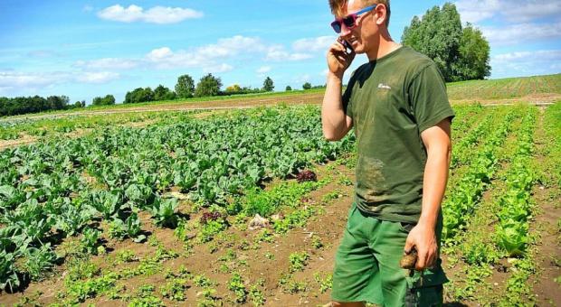 Rolnictwo: Minimalna stawka godzinowa także dla rolnika