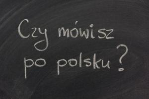 Urzędnicy będą uczyć imigrantów języka polskiego