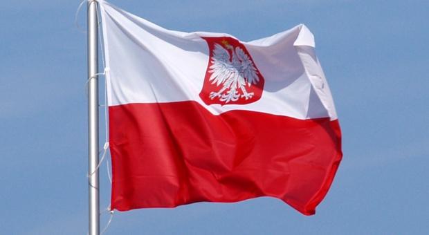 Powstanie Polonijna Rada Konsultacyjna