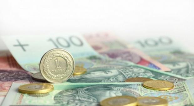 RDS nie ustaliła wysokości płacy minimalnej. Ostateczną decyzję podejmie rząd