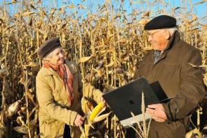 PSL: PiS oszukał rolników. Chce, by pracowali do śmierci