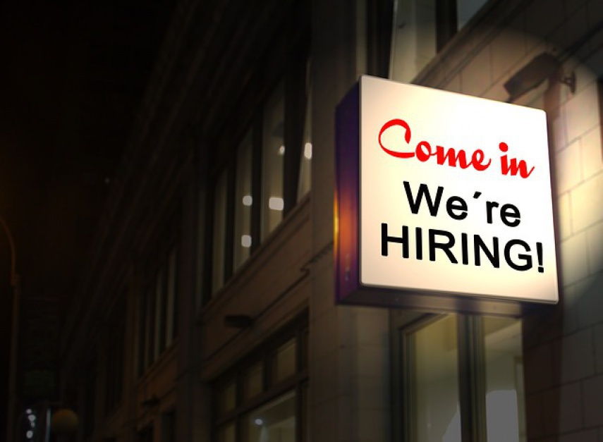 Oferty pracy: Tych specjalistów poszukują pracodawcy w Polsce