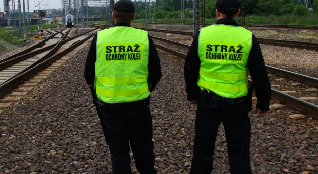 Straż Ochrony Kolei zmieni się w formację policyjną