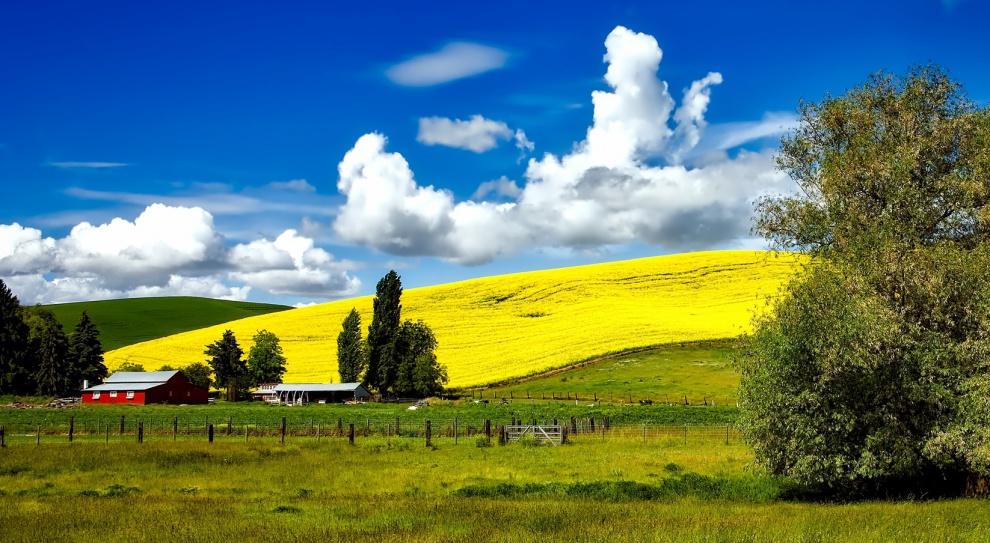 Urlop, wakacje: Agroturystyka coraz popularniejszym sposobem na wypoczynek