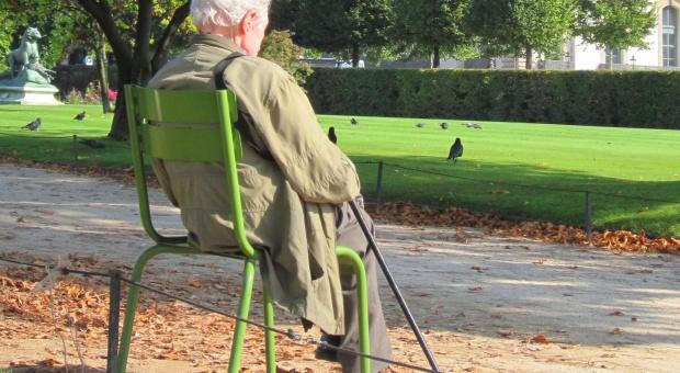 Emerytura, OFE: Reforma emerytalna zagrożeniem dla obligacji