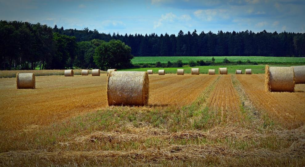 Rolnictwo według zapowiedzi prezydenta Dudy i ministra Jurgiela ma być priorytetem rządu