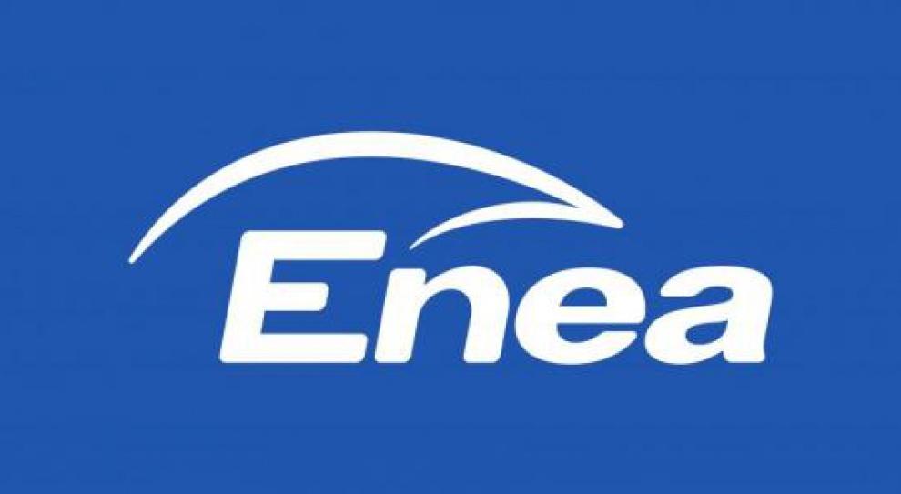 Nowy członek rady nadzorczej Enei
