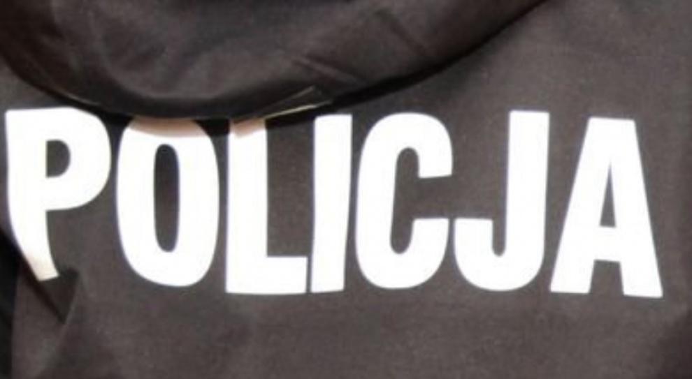 Wielka Brytania: Polski policjant będzie patrolował ulice Harlow