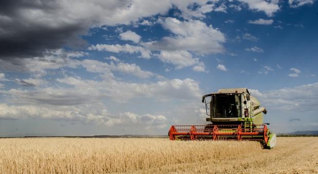Rolnik, praca: Mechanizacja i nowoczesne maszyny pomagają. Wypadków w rolnictwie mniej
