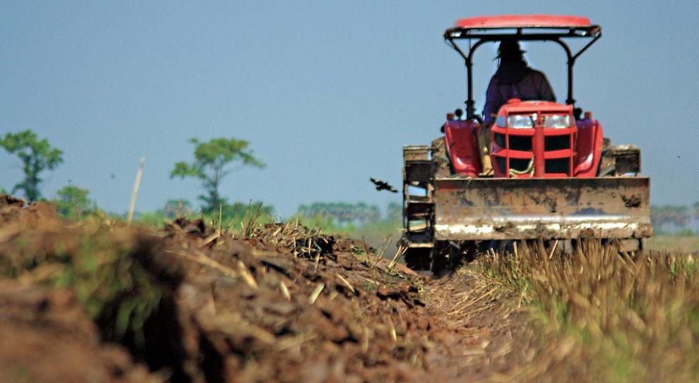 Lubelskie: Rolnicy protestowali w sprawie obietnicy rządu dotyczącej ASF