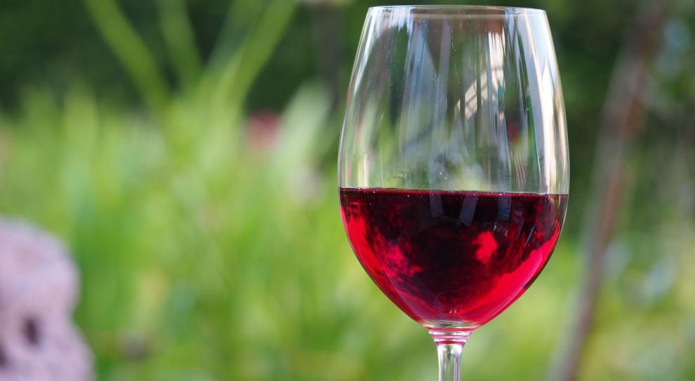 Winnice w Polsce: Lawinowo rośnie liczba winiarzy