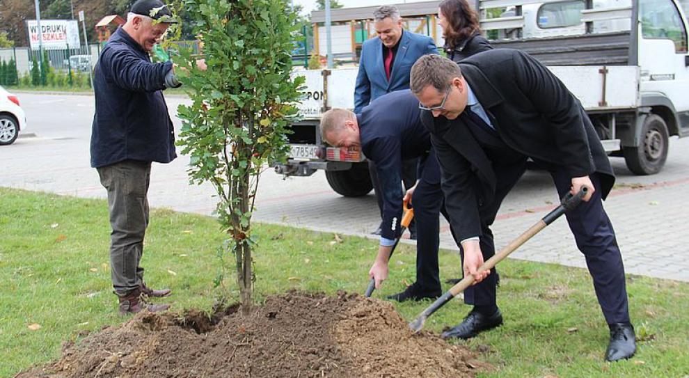 Kalisz: Pracownicy Winiary zasadzili drzewa