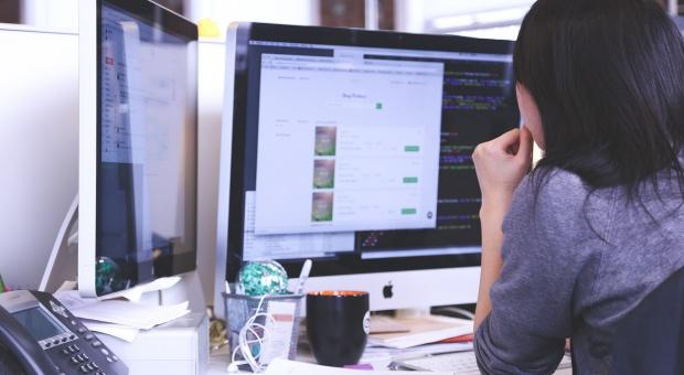 Praca w IT: Jakiego pracodawcę powinien wybrać informatyk?